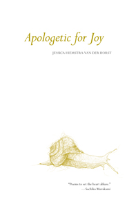 Apologetic for Joy